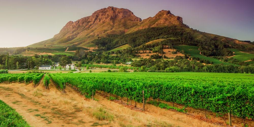 Stellenbosch viagem 15 dias africa sul