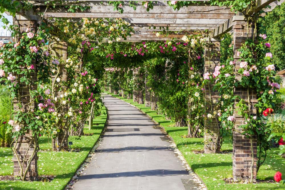 real jardim botanico de londres