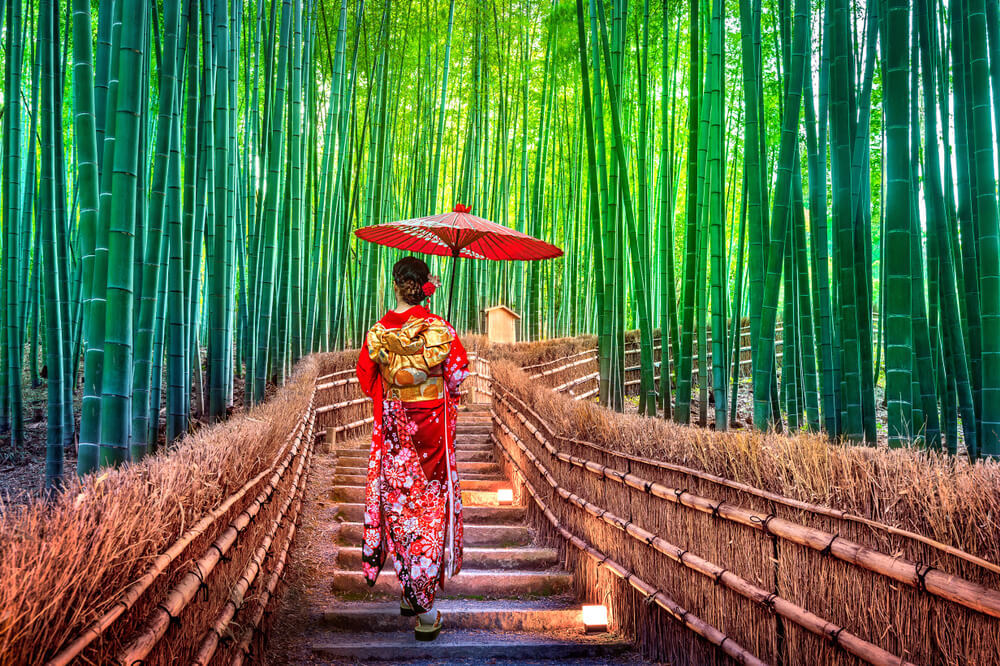 mulher de quiomono passeia pela floresta de bambu