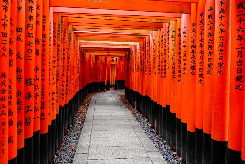 portas torii no templo de fushimi inari