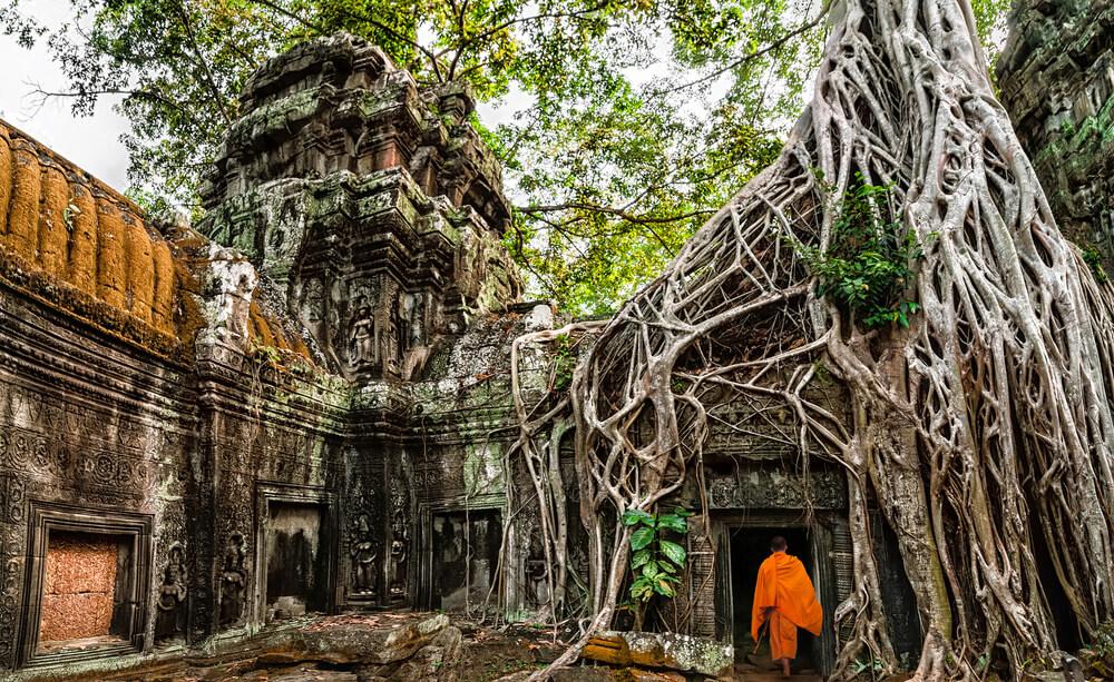 monge budista em ta prohm
