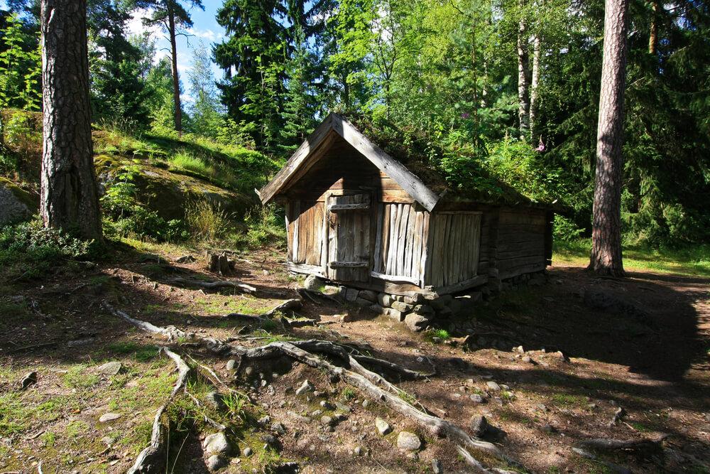 casa de madeira no meio do bosque
