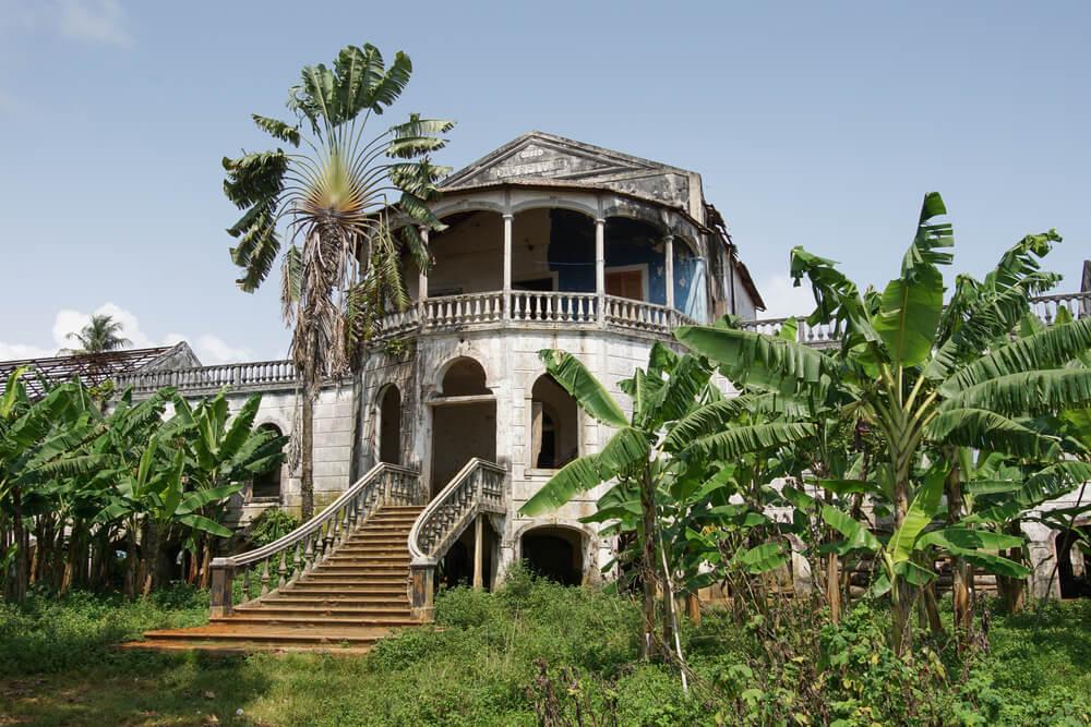 ruinas da roça agua izé com vegetaçao e palmeiras