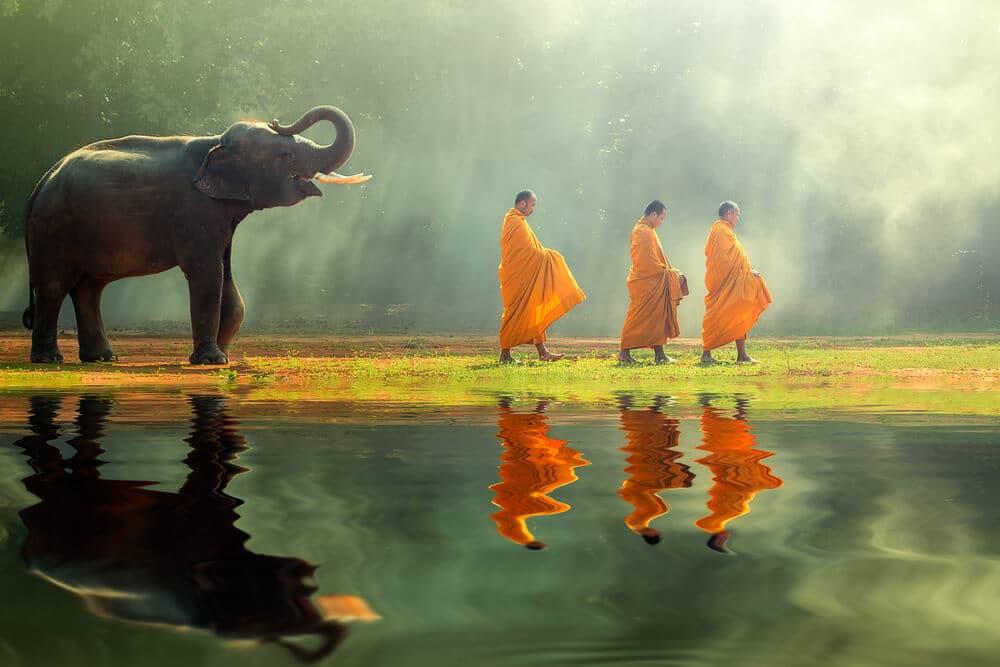 tres monges budistas sao seguidos por um elefante