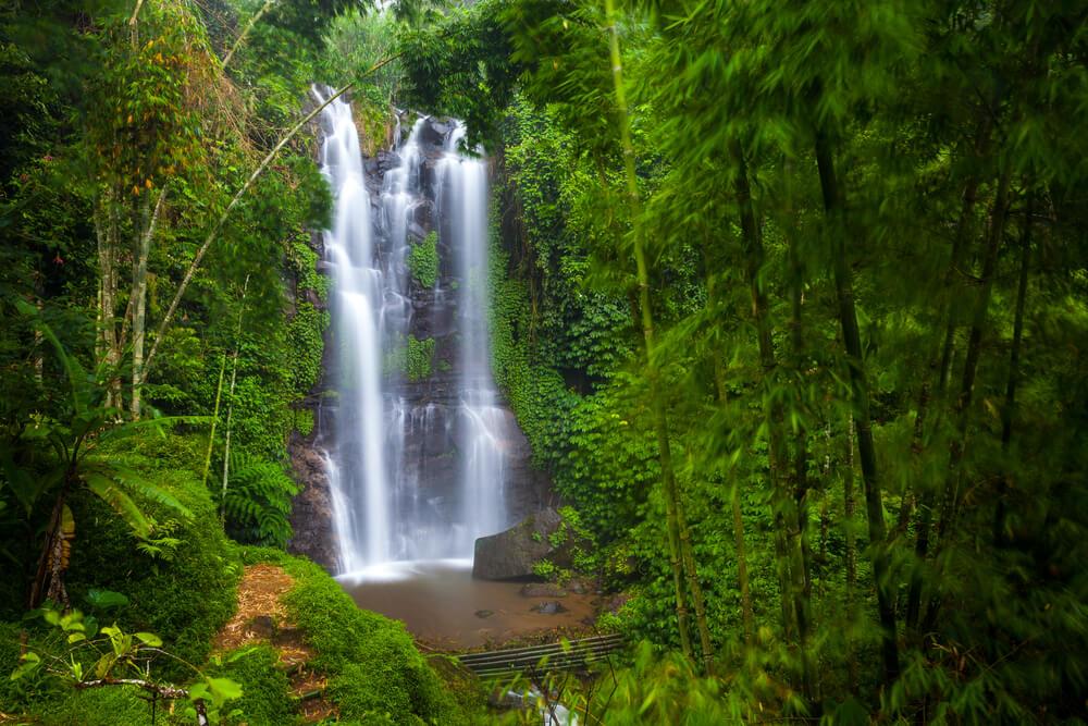 floresta e a cascata munduk em bali