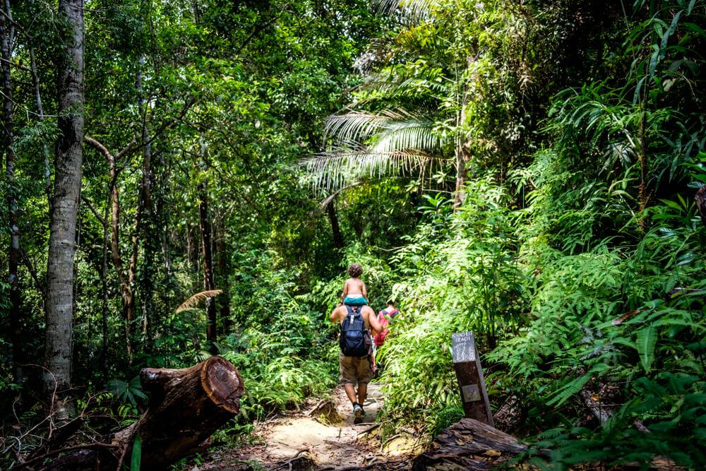 familia passeia no parque nacional de penang